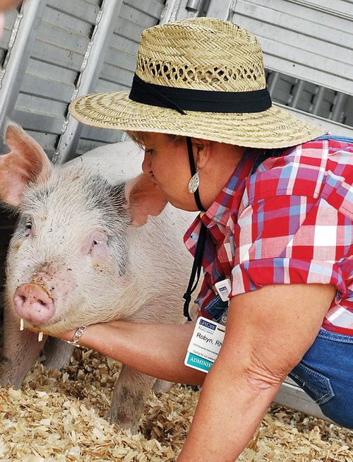 LifeCare kisses pig for Relay