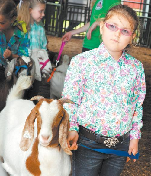 Eastern Carolina 4-H Livestock Show and Sale, pics 2