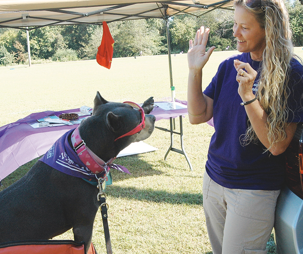 Bark for Life event set for September 26 in Nashville
